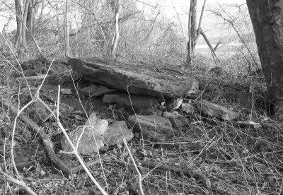Eine alte Steinplatte vom Grafengericht, 2007