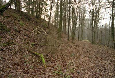 Die Halde des Tiefbauschachts und die Bremsbahn von Norden (Foto: Wiegand, Nov. 02, HM-XXVIII-25)