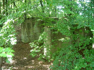 Überreste einer Bremsbahn. (Foto: Kölle, August 2005)